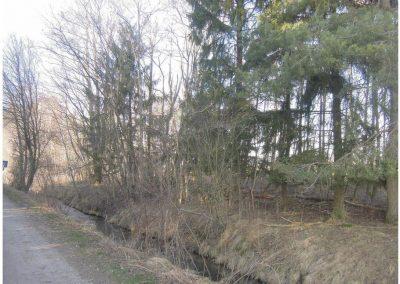 Dilishausen Waldgrundstück